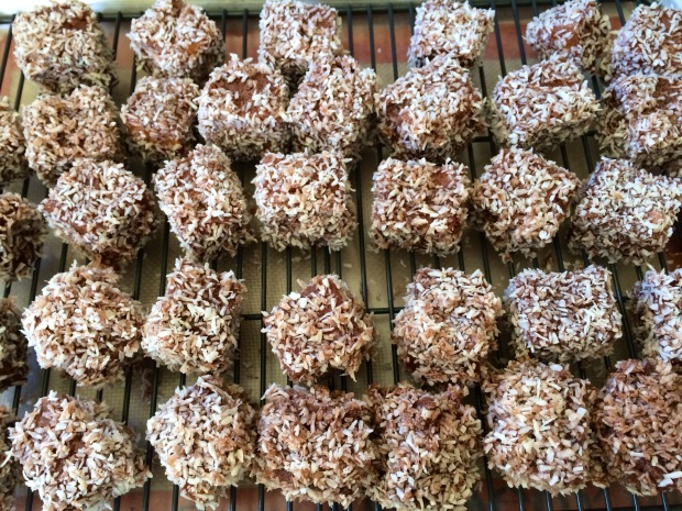 Mini Lamingtons 2